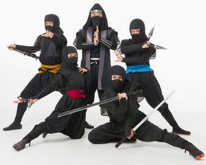 【悲報】日本、忍者不足が深刻 年収960万円でも人集まらず