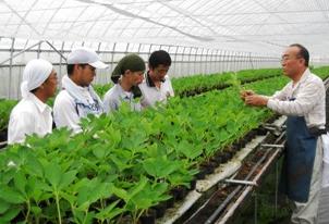 農水省が「ニートや引きこもりの就農支援に補助」→農家「農業なめんな」