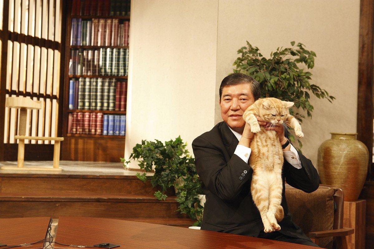 【悲報】石破茂の猫の抱き方に専門家「ありえない」