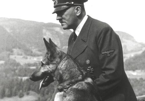 【画像】ヒトラーが描いた犬の絵wwww