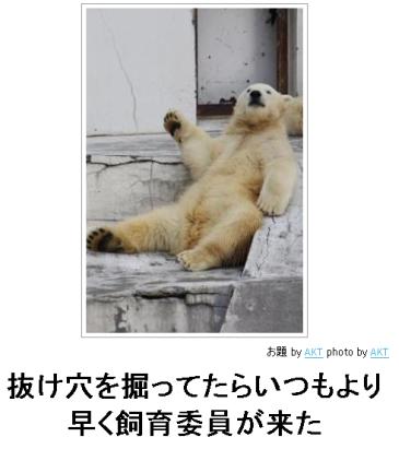 SnapCrab_2013-4-14_20-6-10_No-00