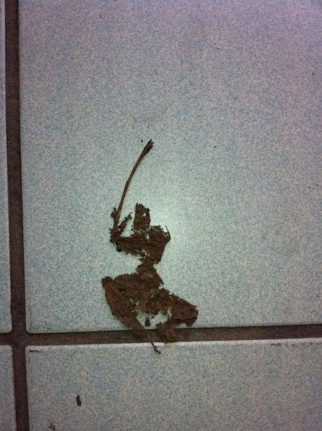 samuraileaf-9741