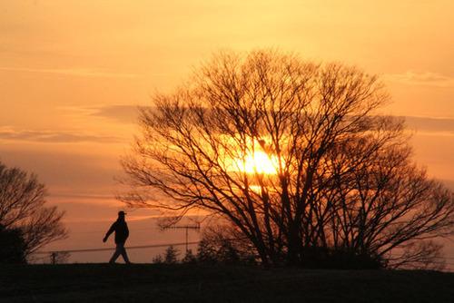 散歩-早足