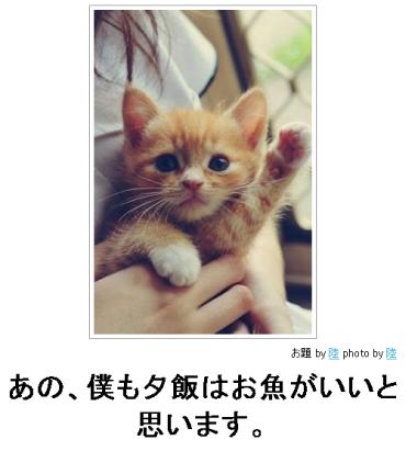 SnapCrab_2013-3-11_17-22-16_No-00
