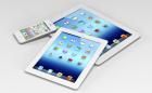 iPad mini (1)