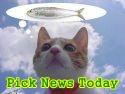 picknews