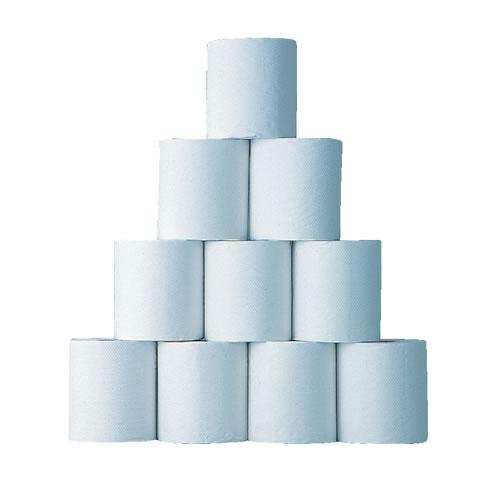 toiletpaper-100m_b