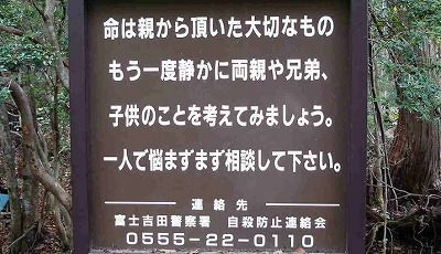 P032761_s