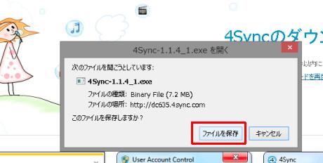 SnapCrab_2013-4-1_20-22-7_No-00