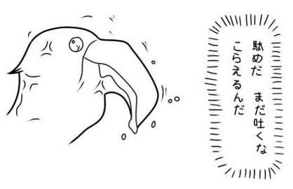 Ph015815