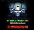 SnapCrab_2013-3-21_11-41-46_No-00