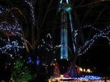 138タワーパーク2005-2