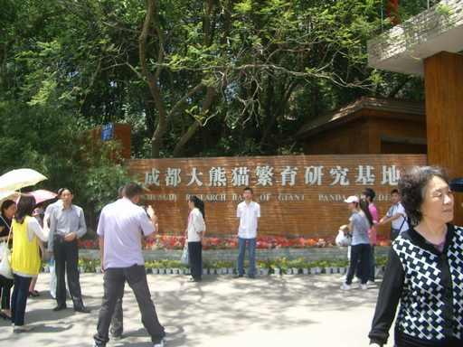 大熊猫繁育研究基地前
