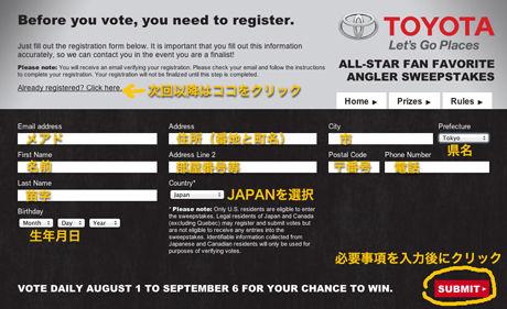 2013allstarvoting_002