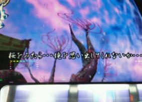 sakurawomitara