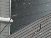 雪の重みで延びた鉄のフック