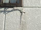 外壁の凍害