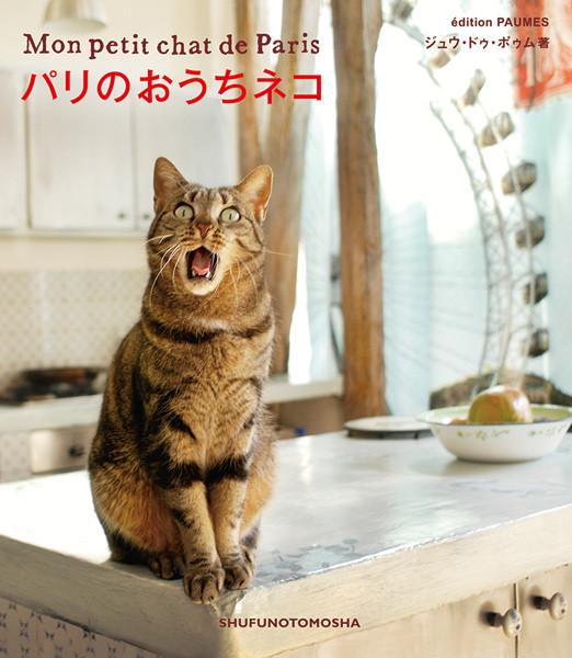 cat01_0110