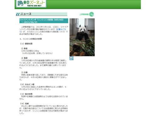 panda01_0625