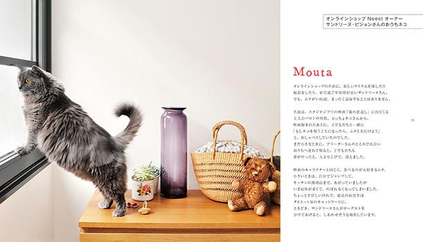 cat05_0110
