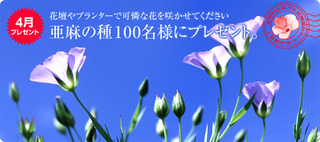 present1004_img01