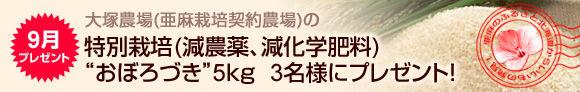 201409亜麻の里プレゼント・おぼろづき