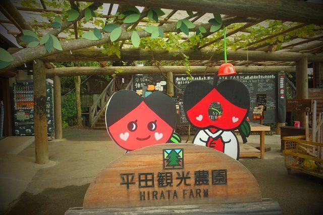 観光 ちょうど 平田 狩り 農園 一年のスケジュール料金