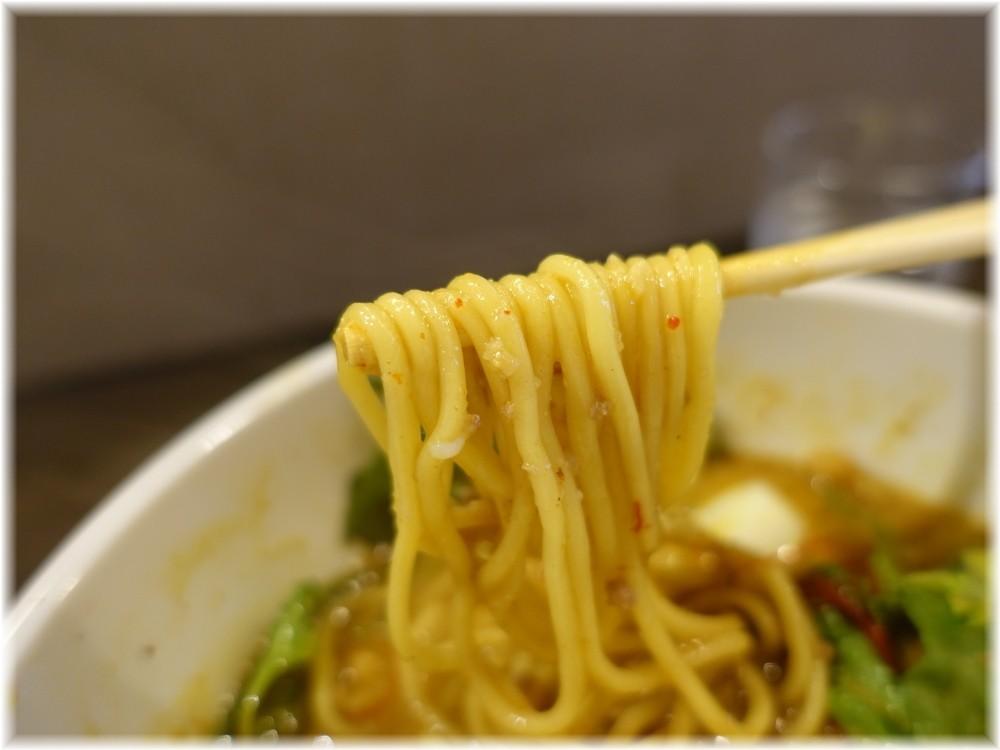 tokyo hoajao style IKEDA2 カリー麺の麺