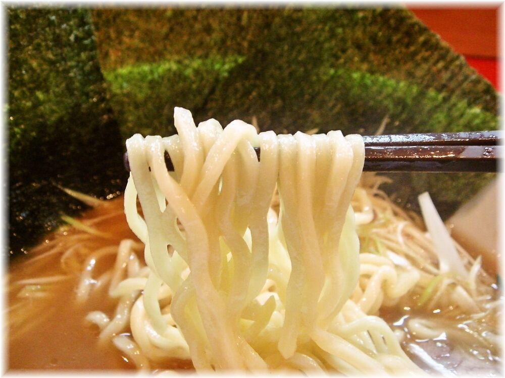 ラーメンしらいし ネギチャーシューメンの麺