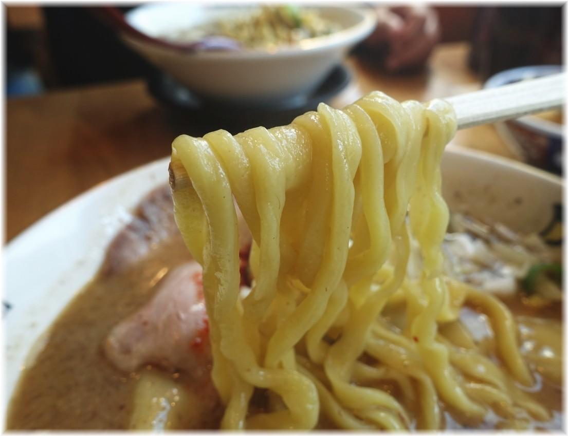 凪田町店 塩煮干ラーメンの麺