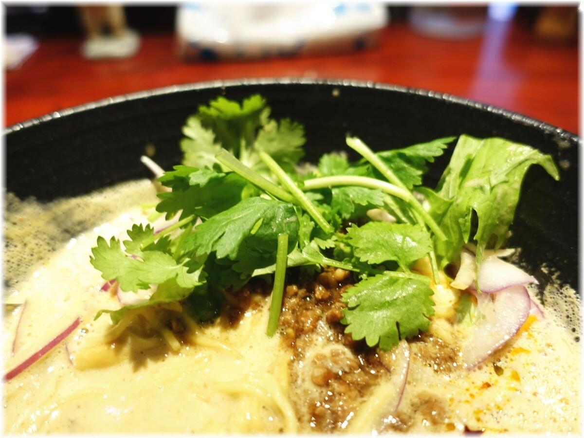 銀座昊 濃厚担々麺にパクチー
