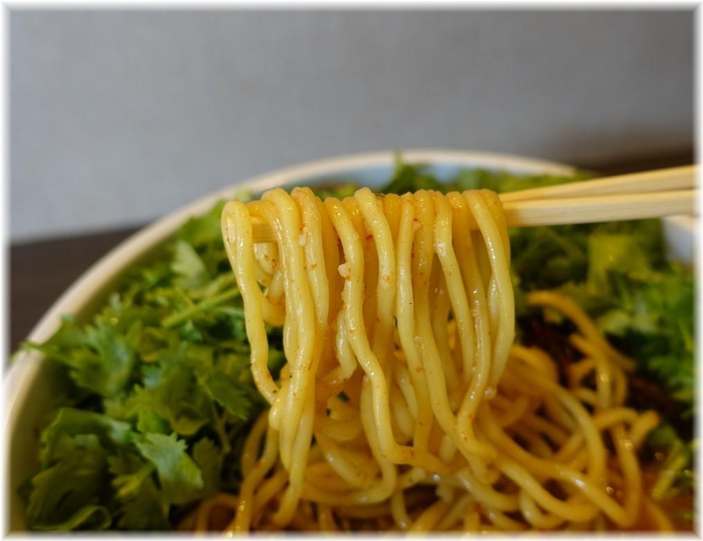tokyo hoajao style IKEDA ラーラーパクチーの麺