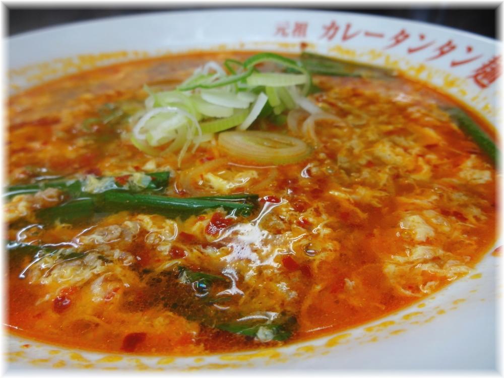 大河家 カレータンタン麺(並)のスープ