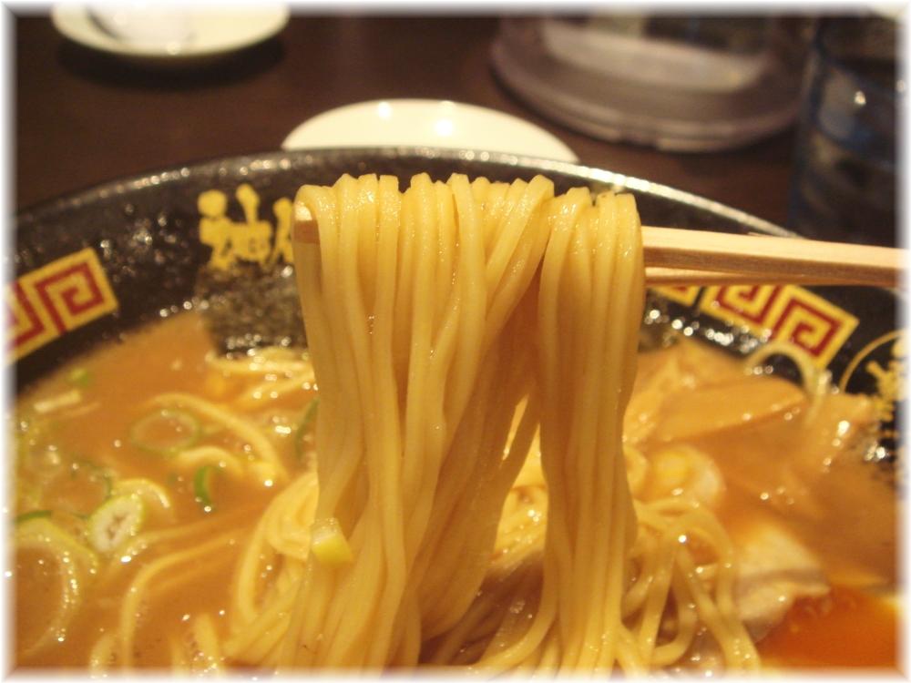 神仙 濃厚中華そば(極上半熟煮玉子入)の麺