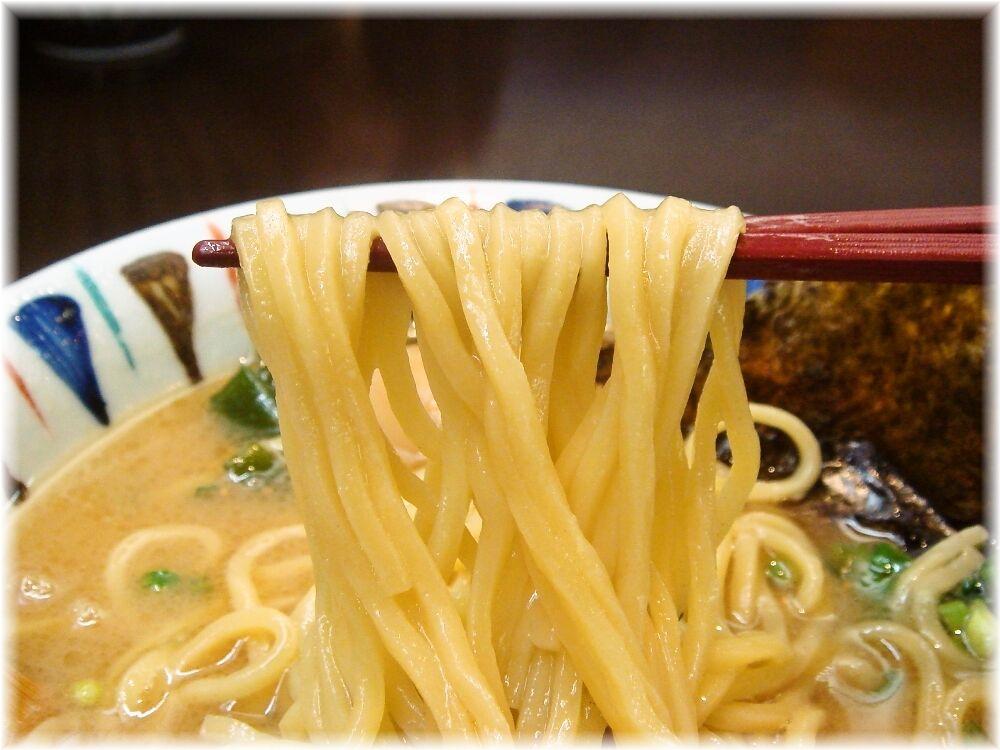 七志 味玉らーめん+角煮の麺