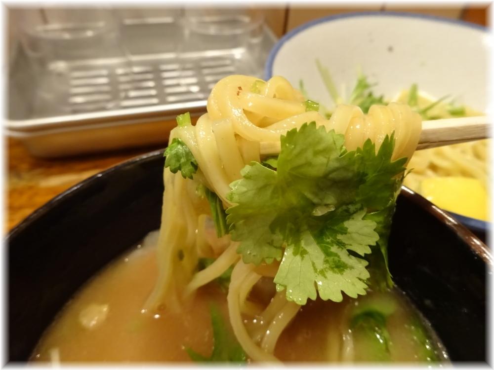 太龍軒7 パクチーつけ麺の麺2