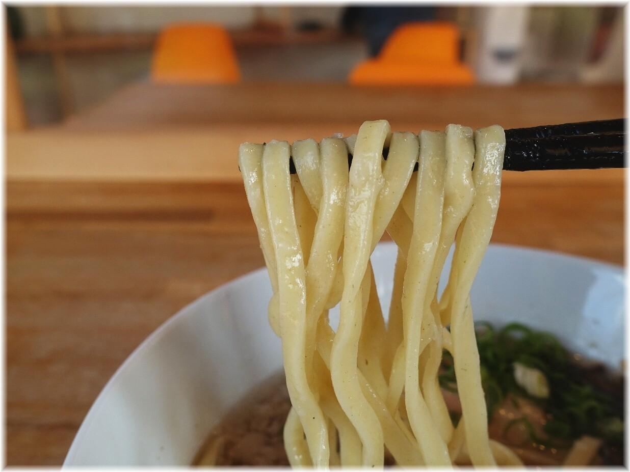 湖麺屋ReelCafe 豚煮干ラーメン(塩)の麺