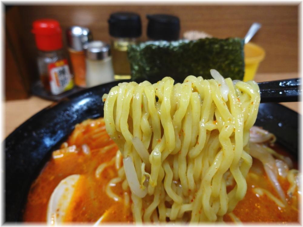 札幌らーめん親 味噌オロチョン+特製味玉の麺