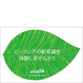 HerbPeeling_leaflet_omote_640x640-350x350