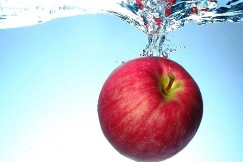 apple09[1]