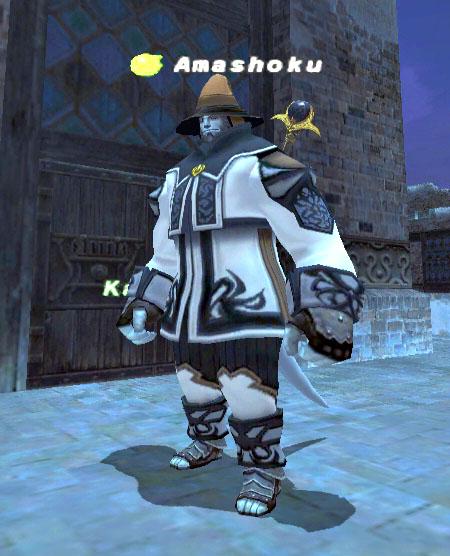 tokimon-game20070506-181613 のコピー.jpg