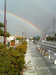 201311291325虹