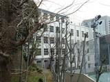 昭和第一高校3