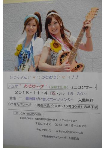 18 11 4関西大会ポスターJ