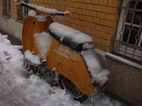冬の厳しさの故の正直か。。
