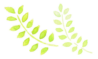 leaf_water1_l