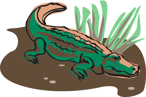 crocodile-44769_640