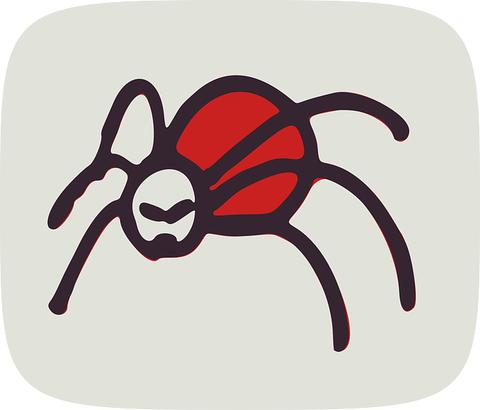spider-161592_640