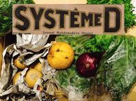 system-d_baner