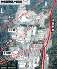 敦賀原発廃炉活断層
